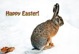 #Happy Easter or just Happy Weekend everyone!