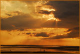 Sunset Sandwich, Cape Cod