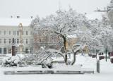 Havas január Szombathelyen  -  Snowy January in Szombathely
