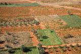 Agricultural fields in Greece polja v Grčiji_MG_4402-111.jpg