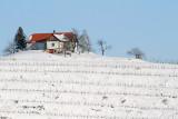 Winter in vineyard zima v vinogradu_MG_9619-11.jpg