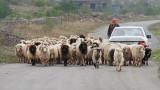 On the road na cesti_MG_9194-111.jpg