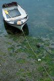 Rowing boat, Mevagissey, Cornwall