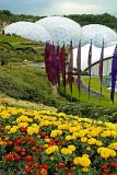 Flowers, flags and biomes, Eden Project, Cornwall