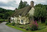 Thatched cottages, Dunster, Somerset (3110)