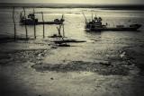 Claouey Bassin d'Arcachon