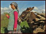 woman  donkey copya.jpg