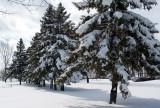 Today snow ( 2013-03-20 )