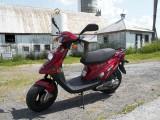 PGO Big Max 2009