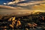 Sunset, Mt. Wellington summit