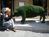 Feeding Green Pig