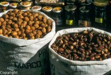 Nuts and pulses, Spain