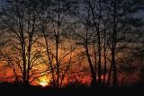 Sunrise at  the Black Locust dsc_0208Nzpb