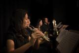 Austrolatin Orchester-Rehearsal-127.jpg