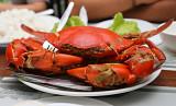 Steamed Crab.jpg