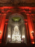 San Francisco City Hall Christmas Tree