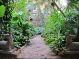 Jim Thompson House garden