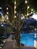 Anantara Pool at Night