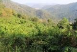 Khao Yai National Park Viewpoint