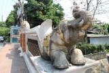 Chiang Mai Klong Elephant