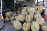Durian Delivery Truck