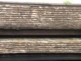 Baan Orapin Roof
