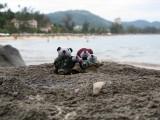 The Pandafords visit Koran Beach