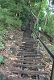 Ao Nang Monkey Trail