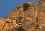 Al-Shafa rocks.jpg