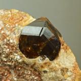 Lustrous sharp 1 cm geniculate twin of cassiterite on mica schist. Merekski ore district, Burea Massif, Khabarovskiy Kray, Far-e