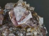 5 cm matrix with purple fluorite penetration twins to 8 mm. Quarry Hill Vein, East Newlandside Quarry, Stanhope, Co Durham.