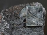 Fluorite, ca 6 mm interpentrant twin with hexoctahedral corner on 16 mm matrix. Burtree Slitts, Cowshill, Weardale, Co Durham.