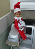 NAUGHTY ELF!  -  ISO 800  -  TAKEN WITH A SONY/ZEISS 24mm E-MOUNT LENS