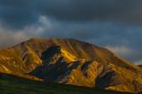 Denali National Park - Alaska - 2010