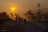 Daybreak and Morning Fog