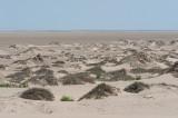 Naukluft dunes