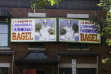 montreal, fairmont bagel