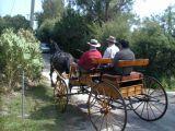 Sunday afternoon ride