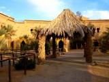 Hotel garden in Merzouga