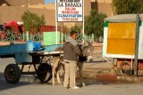 Boy in Rissani with the Donkey