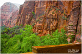Weeping Rock - Zion NP