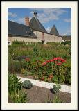 ChevernyChouette jardin potager