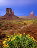 (MV8) Mules ears and Mitten Buttes, Monument Valley, AZ
