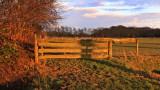 Smeerling - Landschap met hek