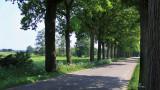Ellersinghuizen - Weenderstraat