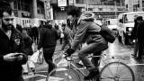 Crosswalk Cyclist