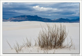 Untitled 6, White Sands National Monument, New Mexico, 2013