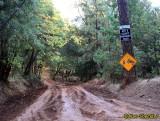 Jordan Hill Road, Magalia