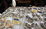 Ferry Building Marketplace oysters and clams