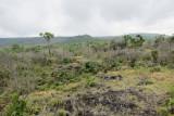 Mt. Karthala, Grande Comore